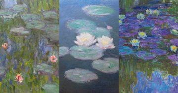 C6 Monet's Water Lilies mini